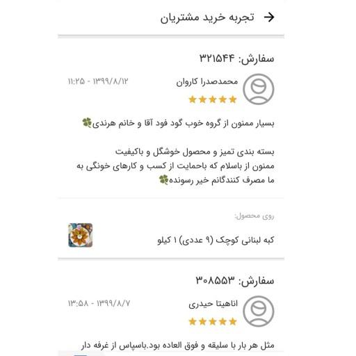 کبه لبنانی کوچک (10 عددی) 900 گرمی- باسلام