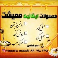 سیدرضا مرعشی