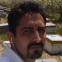 محمد جواد رضایی