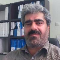 مجید فتحی پور