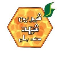 حسین کاظمی نژاد