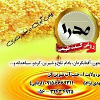 محمدحسین اربابی