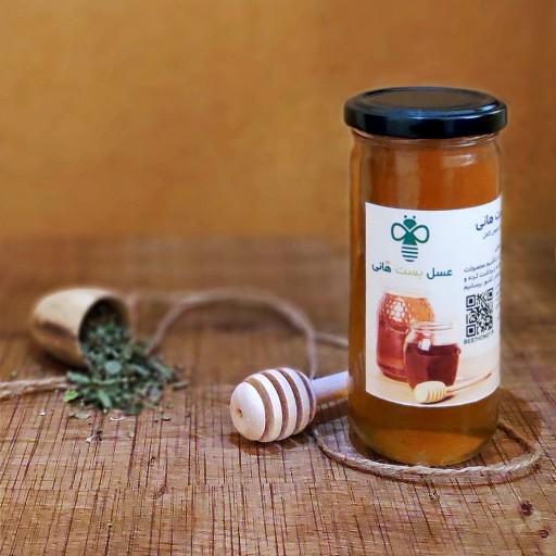 عسل آویشن گرید A++ بست هانی -🏵️🏵️ عنوان های دیگر: عسل درمانی ، خرید عسل طبیعی ، عسل وحشی ،  عسل ارگانیک ، عسل کوهی ، عسل با برگه آزمایش- باسلام