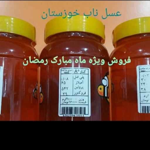 عسل کنار خوزستان ساکارز زیر 2 (1000 گرمی) ارسال رایگان- باسلام