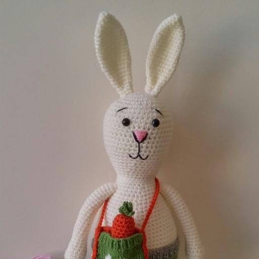خرگوش با کیف هویج- باسلام