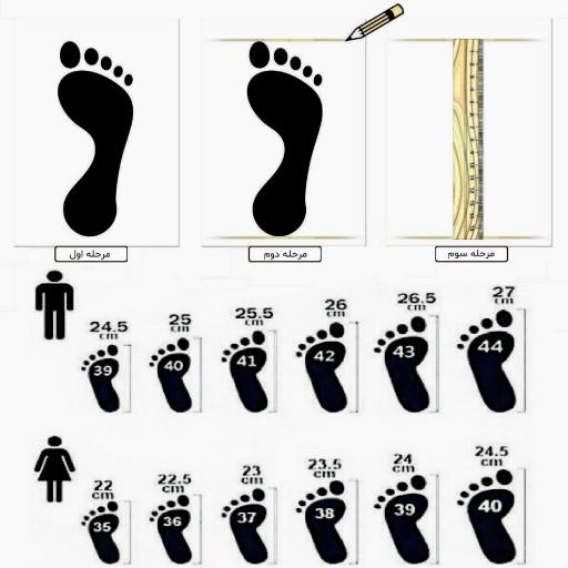 کفش اسپرت زنانه مدل اسکیچرز - باسلام