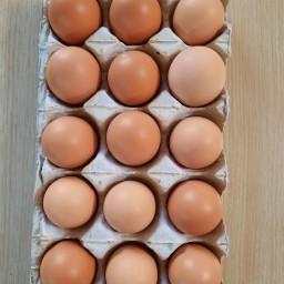 تخم مرغ محلی صددرصد طبیعی (شانه15عددی)
