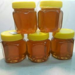 عسل گون و زول تسنیم