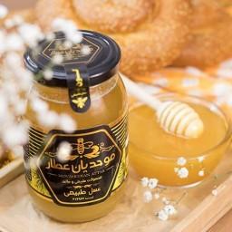 عسل گون رس شده 600 گرم(به  شهرقم )