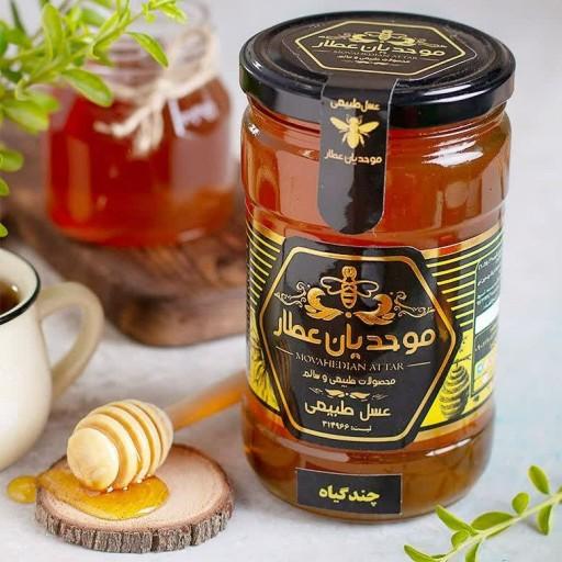 عسل چندگیاه گرمسیری درحال رس🍯جدید🍯(توزیع سراسر ایران- باسلام