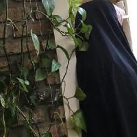 manoochehri
