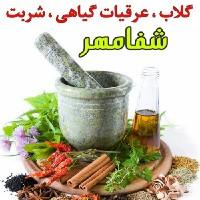 کیوان فاضلی