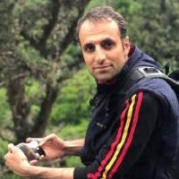 رضا عسگریلو
