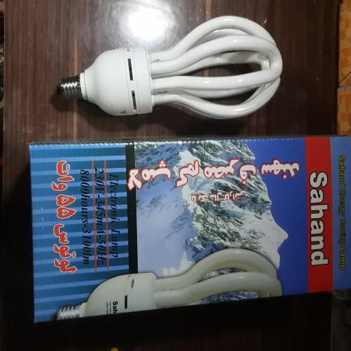 لامپ لوتوس- باسلام