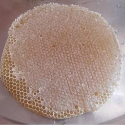 (عسل بهاران ) تولید شده توسط زنبوردار