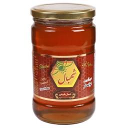عسل تک گیاه طبیعی شهبال خوانسار شهد گشنیز (850 گرم)