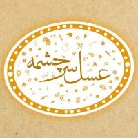 محمدجواد فتحی/سرچشمه