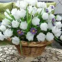 زینب انصاری (گلهای کریستال)