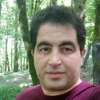 علی ترکمانی