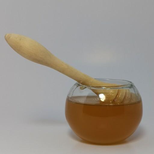 عسل طبیعی گون یک کیلویی (ارسال رایگان)- باسلام