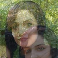 فیروزه رضایی