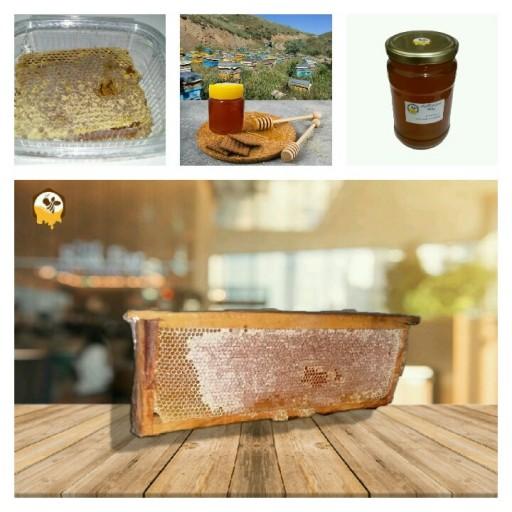 عسل چند گیاه خام دیابتی 500گرم پلنگا ساکارز 1.61 - باسلام