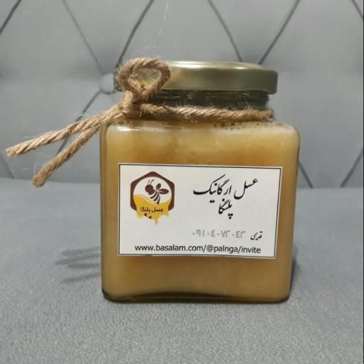 غرفهٔ عسل خام پلنگا