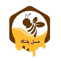 احمد قدیمی/ عسل خام خلخال