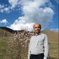 احمد قدیمی / عسل ارگانیک