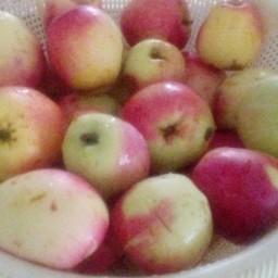 سرکه سیب خانگی شمال
