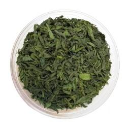 چای سبز سالمین