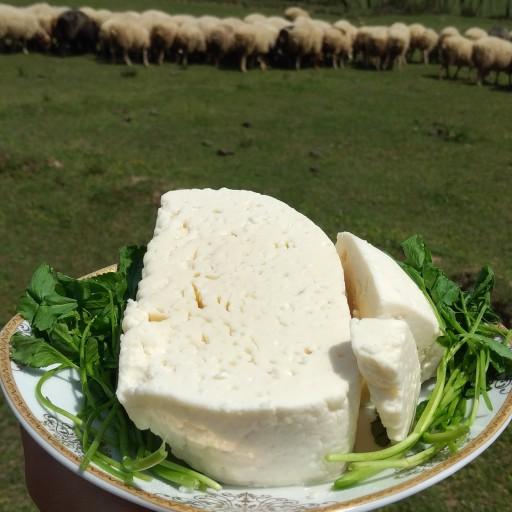 پنیر با کیفیت کره ای اصل سیاهمزگی(نیم کیلویی)- باسلام
