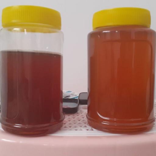 عسل کوهستان های کردستان، کاملا طبیعی و بدون مواد افزودنی شیمیایی- باسلام