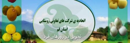 اتحادیه تعاونیهای روستایی استان قم