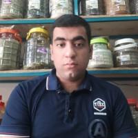 حیدر انصاری