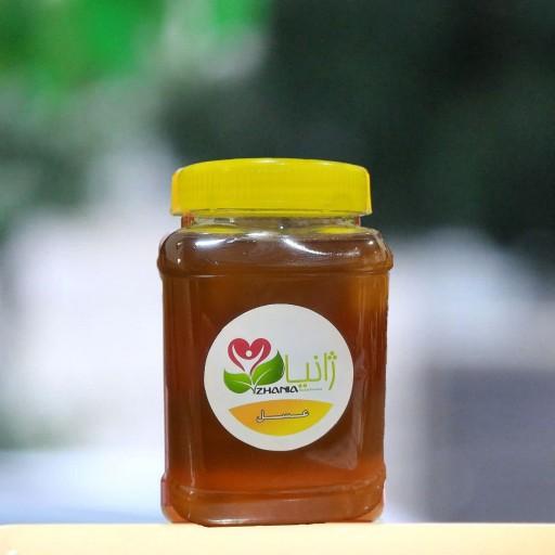 عسل کنار طبیعی و ارگانیک نیم کیلویی- باسلام