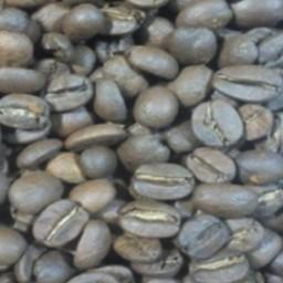 قهوه برزیل خوش عطر و تازه برای اسپرسو و فرانسه
