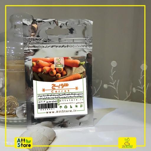 بذر هویج- باسلام