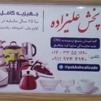 هادی علیزاده