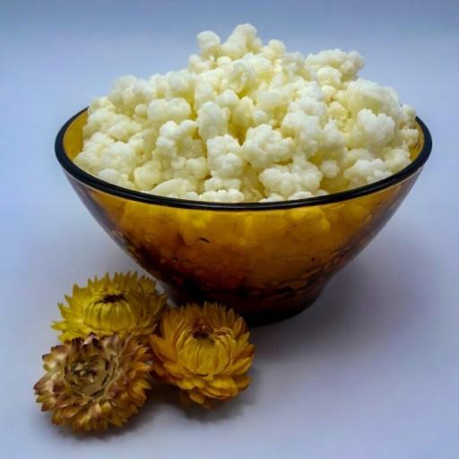 قارچ کفیر (50 گرمی)- باسلام