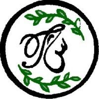 تی شین