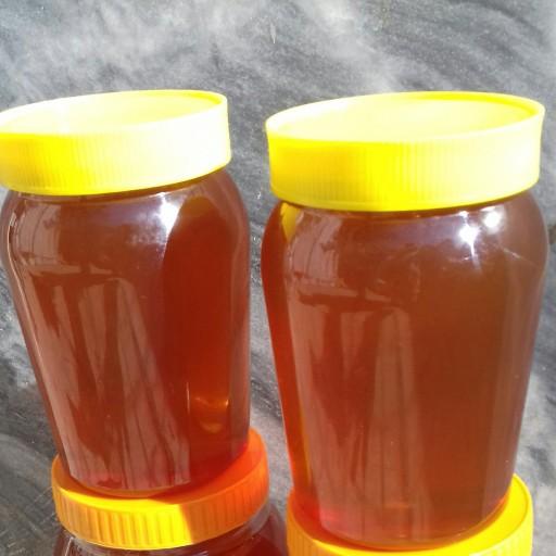 عسل چهل گیاه خالص ساکارز یک- باسلام