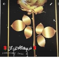 زری محمدی