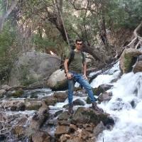 محمد رضا اکبری