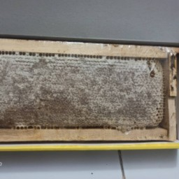 عسل طبیعی کوهی سبلان موم دار جعبه ای یک کیلو ودویست گرمی