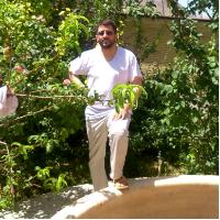 علی تبریزی