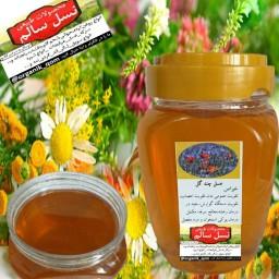 عسل چندگیاه نسل سالم