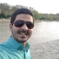 سید علی حامی