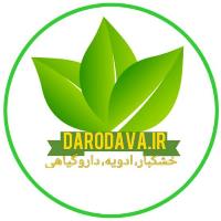 دارودوا
