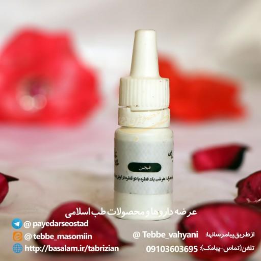 فیجن- باسلام